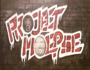 Project Moepse
